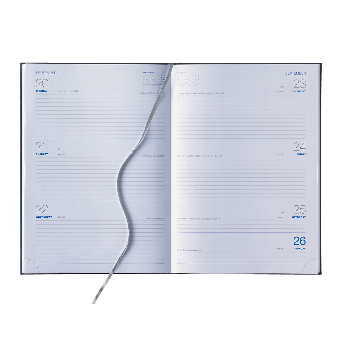 Large image for Royal Blue A4 Daily Diary
